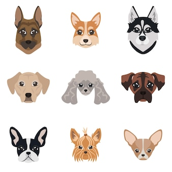 Collection de visages de chiens. ensemble de différentes races.