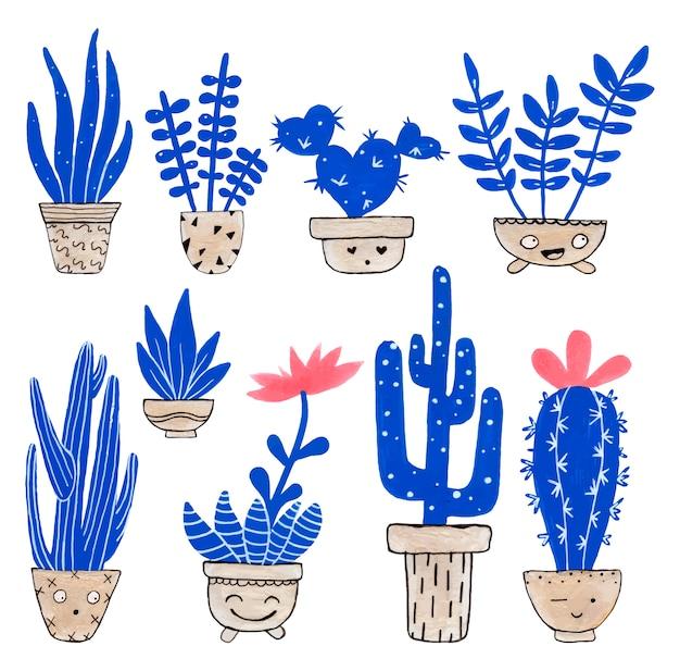 Collections de cactus agréables