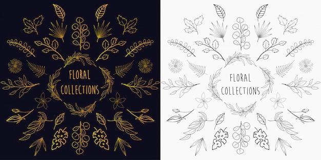 Collections d'éléments floraux dessinés à la main