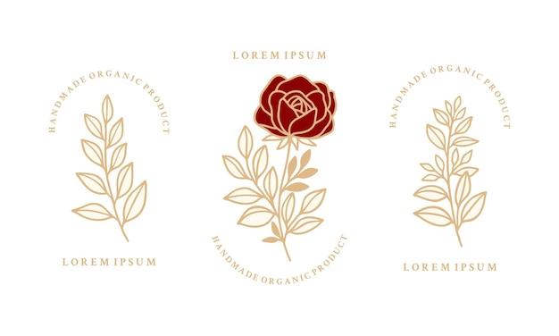 Collections d'éléments de logo floral botanique rose et feuille dessinés à la main