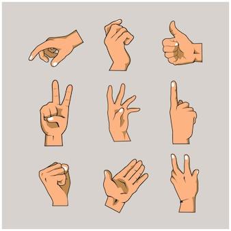 Collections de mains et de doigts