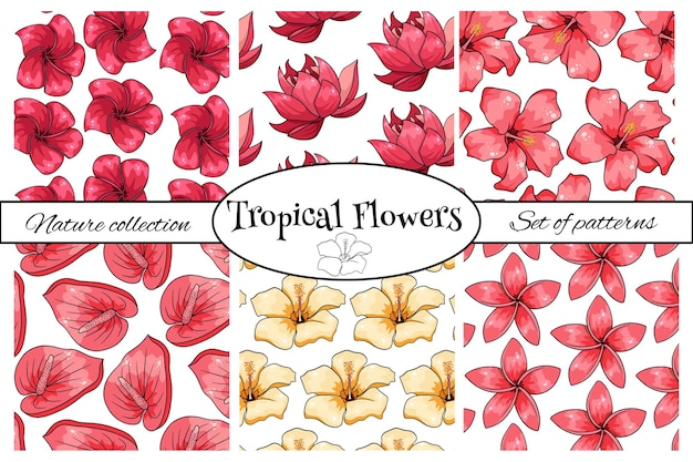 Collections De Motifs Tropicaux Avec Des Fleurs Exotiques En Style Cartoon. Impression D'été Lumineuse Pour La Conception Et L'arrière-plan. Vecteur Premium