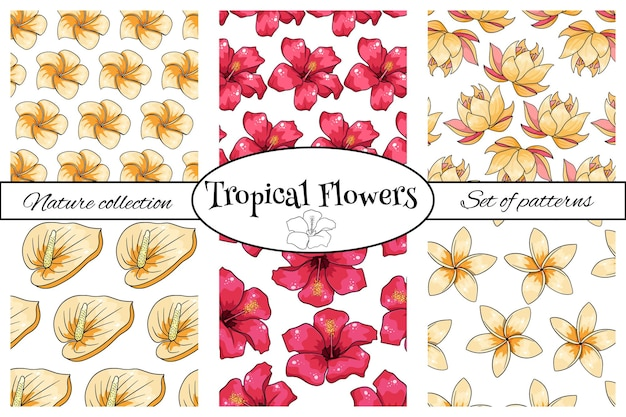 Collections de motifs tropicaux avec des fleurs exotiques en style cartoon. impression d'été lumineuse pour la conception et l'arrière-plan.