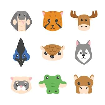 Collections de visages d'animaux exotiques