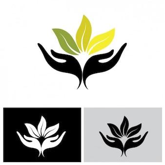 Coloré logo