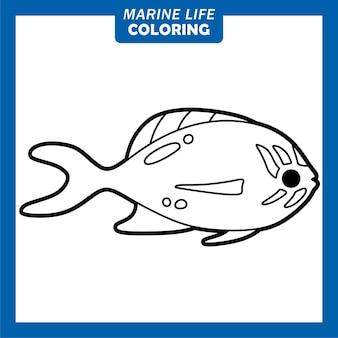 Coloriage personnages de dessins animés mignons de la vie marine flame anthias