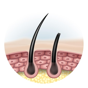 Comparaison complète de la brillance des cheveux avec des cheveux abîmés et des pointes fourchues