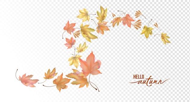 Composition abstraite avec des graines et des feuilles d'automne volantes