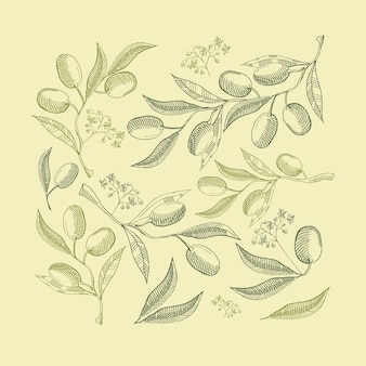 Composition abstraite de vert naturel