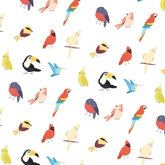 Composition d'animaux d'espèces d'oiseaux