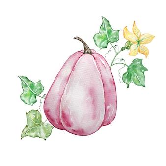 Composition d'automne à l'aquarelle avec une citrouille rose et une branche avec des fleurs jaunes. illustration pour les invitations, la typographie, l'impression et d'autres conceptions.