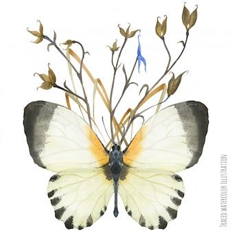 Composition à la boutonnière avec des papillons et des plantes