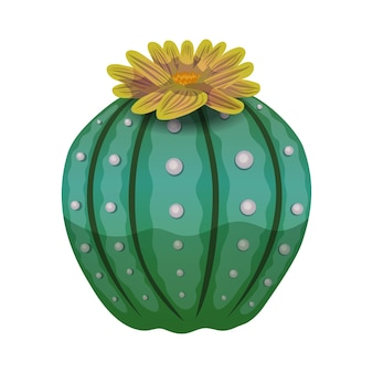Composition de cactus avec image isolée de fleur de citrouille artisanale sur blanc