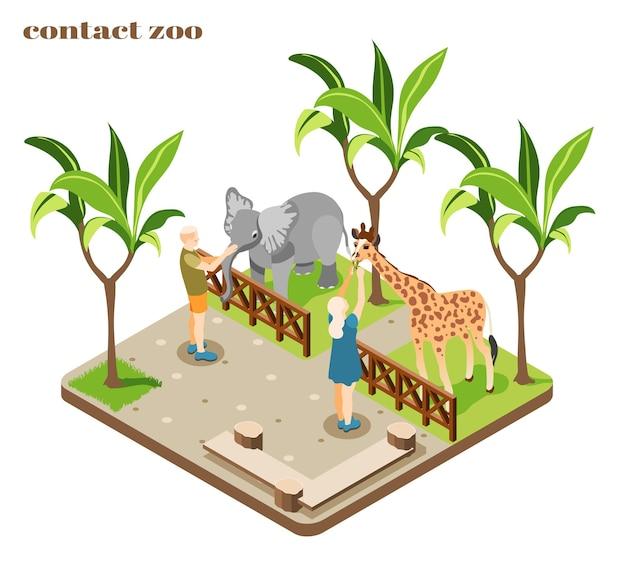 Composition colorée et isométrique du zoo de contact avec le personnel qui nourrit l'éléphant et la girafe
