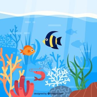 Composition de conservation de l'écosystème avec des animaux marins