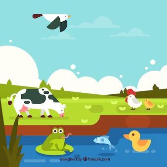Composition de conservation des écosystèmes avec de beaux animaux