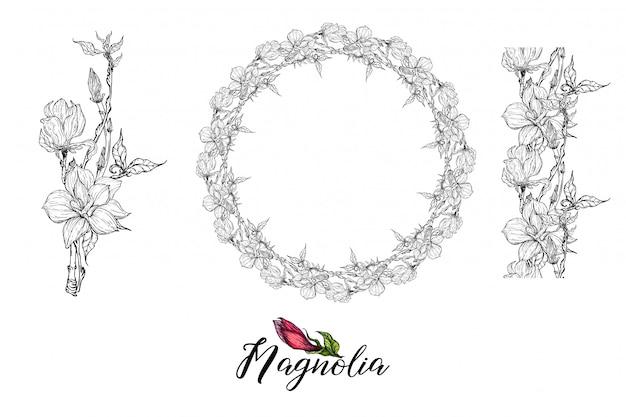 Composition avec des fleurs de magnolia