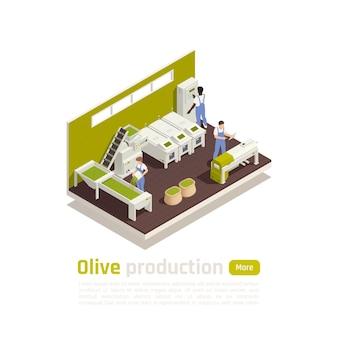 Composition isométrique du processus de fabrication de l'huile d'olive avec bannière automatisée des opérateurs de ligne de tri et de pétrissage des fruits récoltés