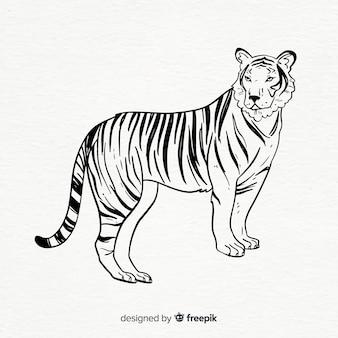 Composition de tigre classique dessiné à la main