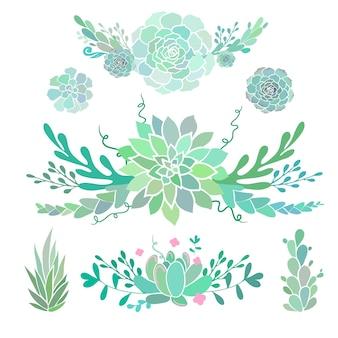 Compositions florales avec des plantes succulentes vector bordures décoratives florales