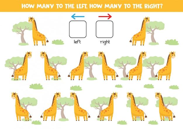 Comptez combien de girafes vont à droite et à gauche.