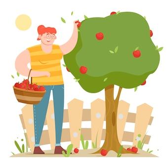 Concept d'agriculture biologique avec une femme cueillant des pommes