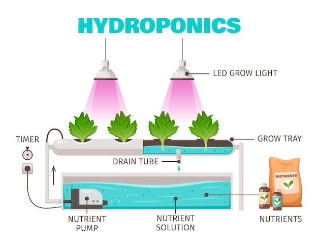 Concept d'agriculture hydroponique avec dessin animé de symboles d'économie d'eau verticale