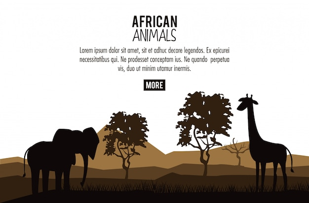 Concept d'animaux africains