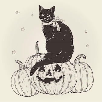 Concept de chat halloween