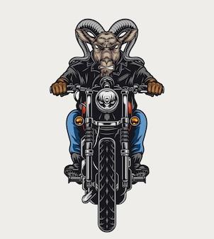 Concept coloré de motard féroce de tête de chèvre avec la moto cruelle d'équitation d'animal dans l'illustration d'isolement de style de cru