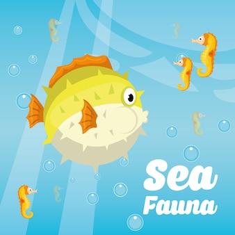 Concept de la faune marine