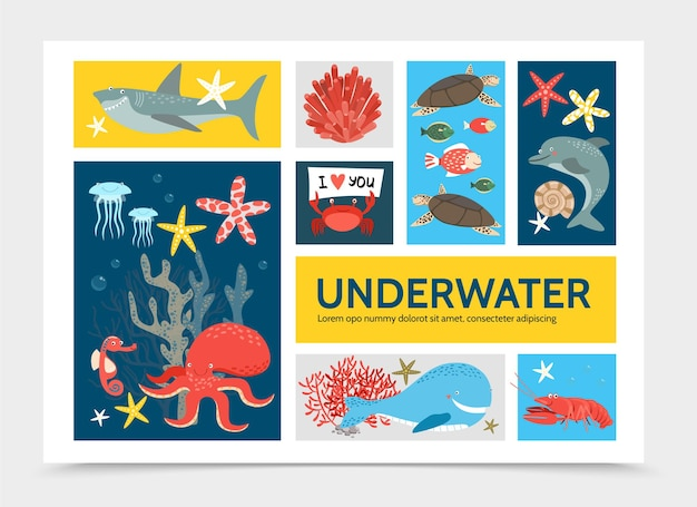 Concept d'infographie monde sous-marin plat avec poisson requin dauphin tortue poulpe crabe homard baleine hippocampe