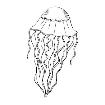 Concept de méduse dessiné à la main