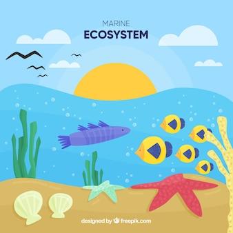 Concept nature et écosystème