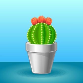 Concept de plante exotique organique