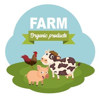 Concept pour la ferme des animaux et de la viande biologique