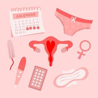 Concept de système reproducteur féminin