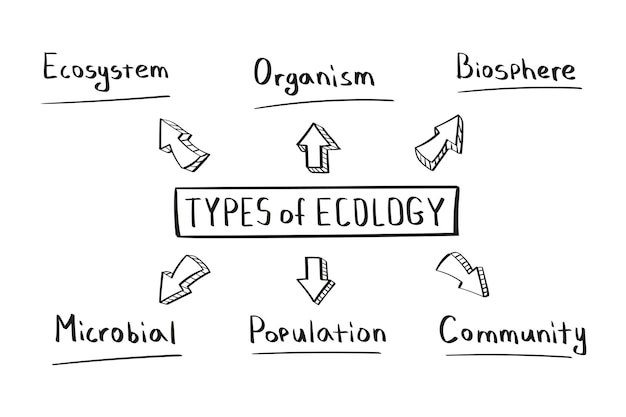 Concept de types de carte mentale écologique dans un style manuscrit.