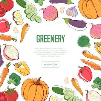 Concept de verdure biologique avec des légumes