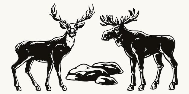 Concept vintage de cerfs et d'orignaux debout près de pierres dans un style monochrome isolé