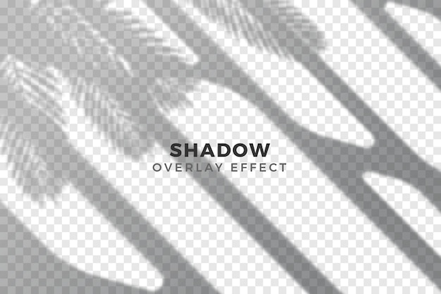 Conception abstraite d'ombres transparentes