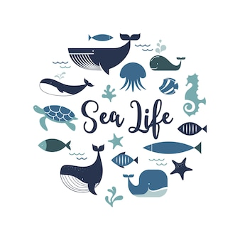 Conception d'affiches d'icônes et d'illustrations de dauphins de baleines de la vie marine