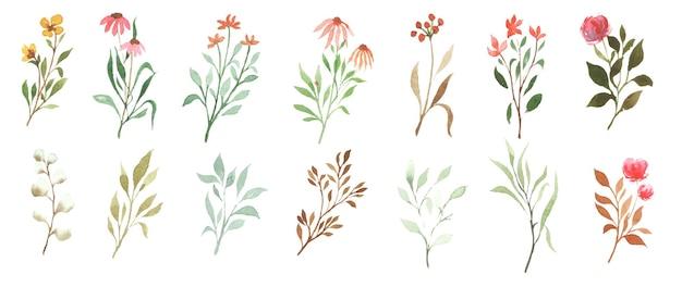 Conception d'art floral aquarelle à la main