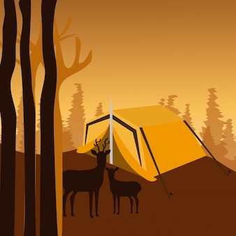 Conception de camping.