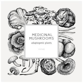 Conception carrée de champignon médicinal cadre de plantes adaptogènes esquissé à la main