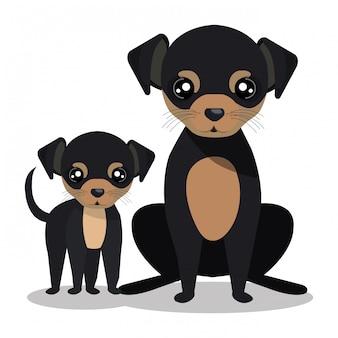 Conception de chien mignon