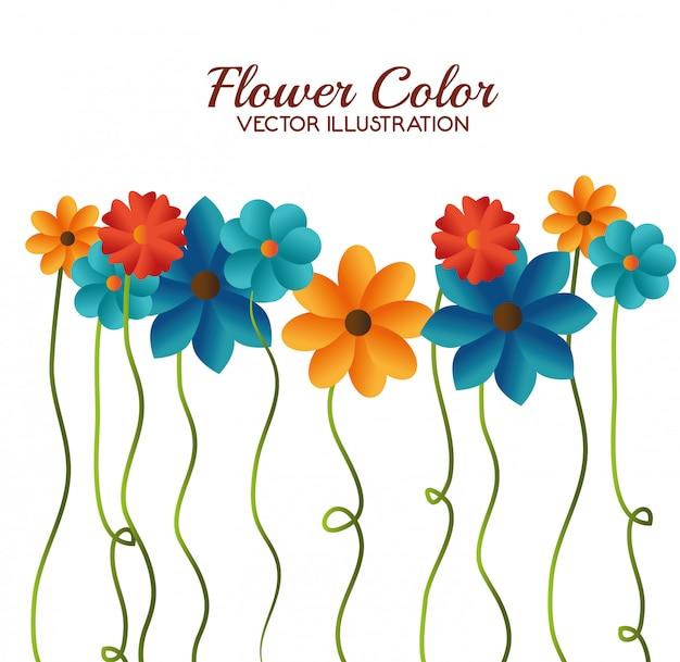 Conception de couleur de fleur