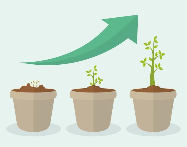 Conception de la croissance financière.