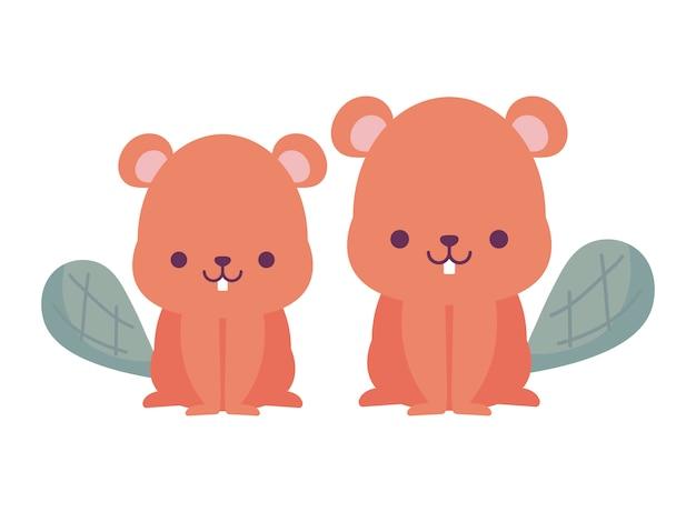 Conception de dessins animés de castors kawaii