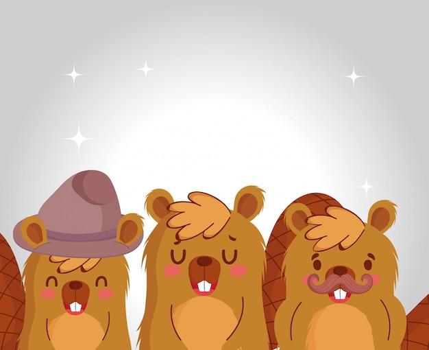 Conception de dessins animés de castors mignons